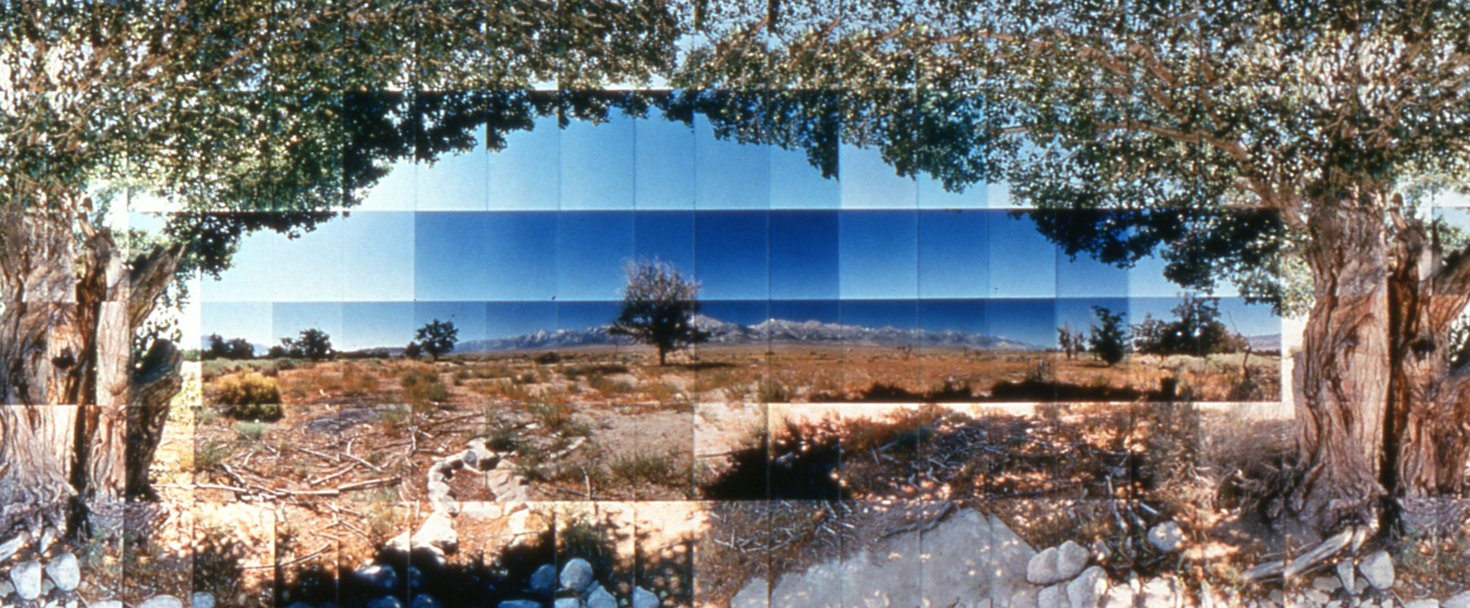 Picture of Manzanar Relocation Camp, Tree View, Inyo, California, by Dr. Masumi Hayashi